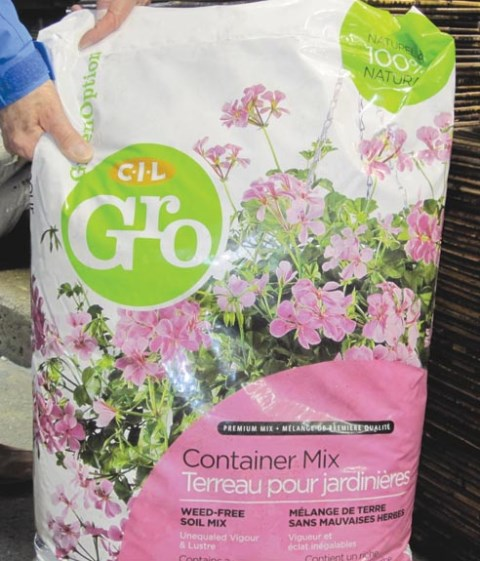 Outdoor potting mix. Garden soil is not good for containers.