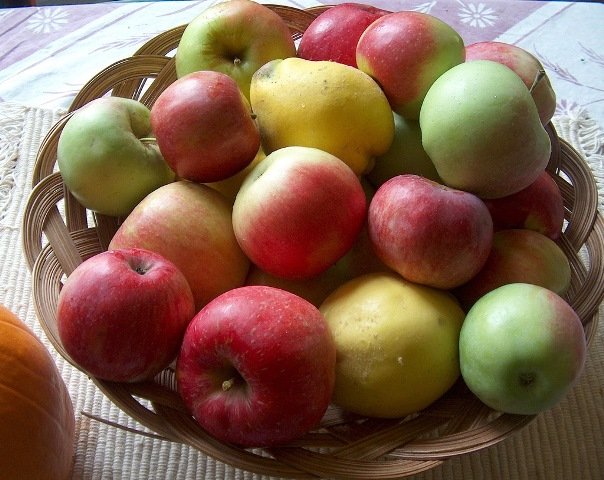 A basket of apples Photo: kightp, Creative Commons, Flickr