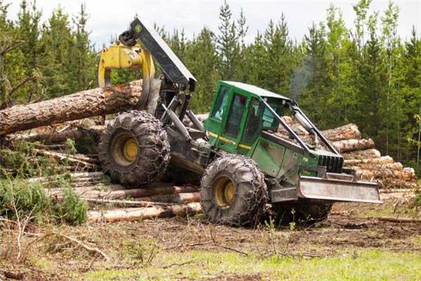 Derek Woollends 'skids' logs to pile. Photo – Mark Yuen / The Vancouver Sun
