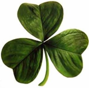 shamrock-irish-clover