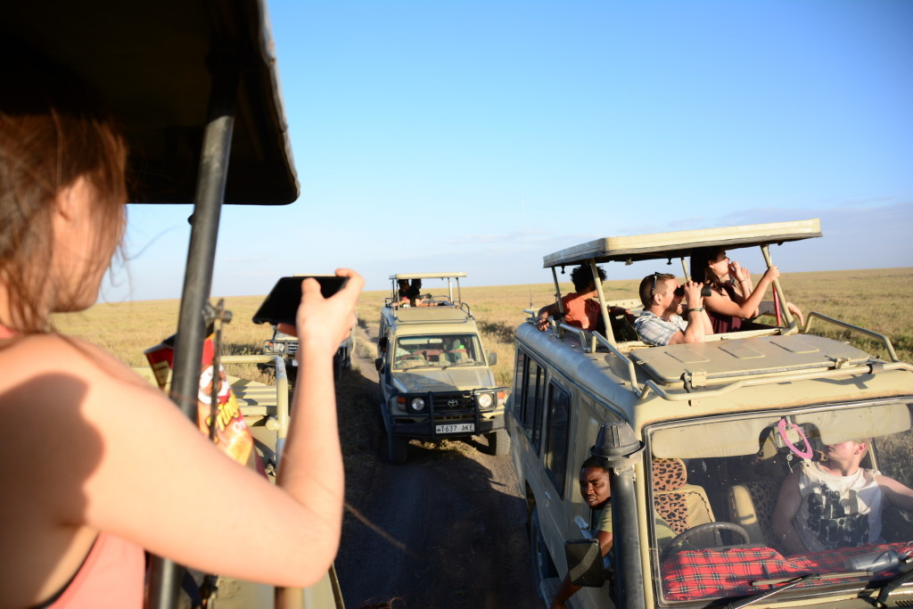 Streetfront students toured Serengeti National Park in Tanzania Photo courtesy of Streetfront