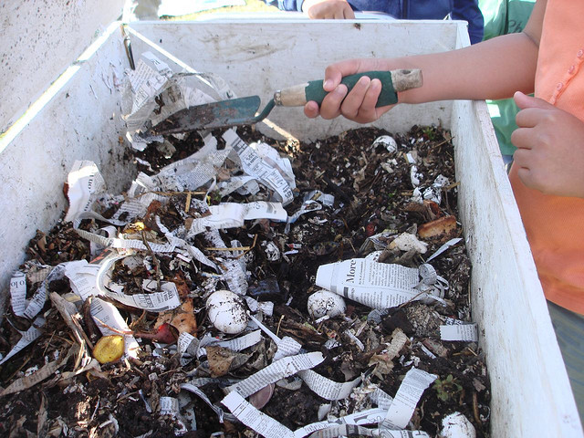 Inside a compost box Photo by msacbmom/CC, Flickr