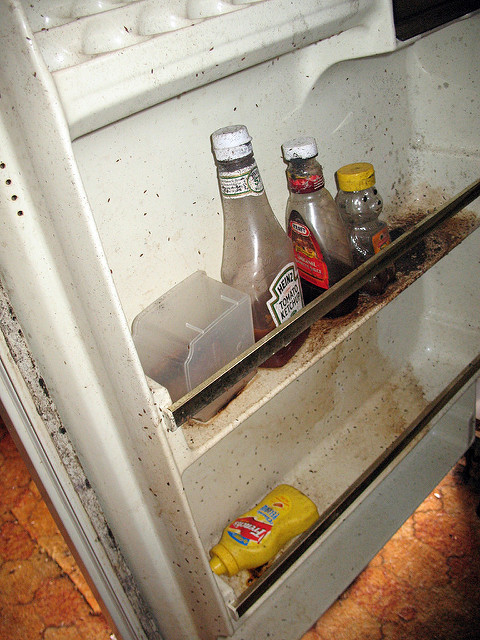 Food was left in this fridge a month ago. It is moldy and must be thrown away. Photo - CC/Flickr