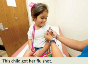 Flu shots during COVID-19 - The Westcoast Reader